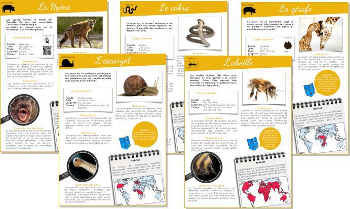 5 nouveaux documentaires animaliers – Mon école